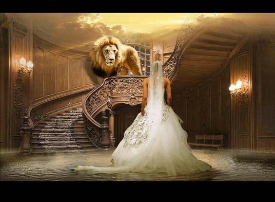 bride-lion